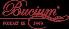 bucium-iasi-logo